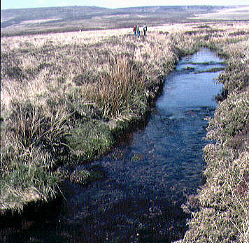 Channel in the headwaters