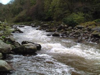 River showing differing speeds of flow