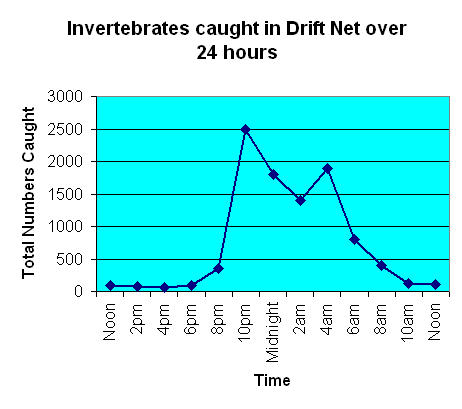 Graph showing how many invertibrates were caught over a 24 hr period