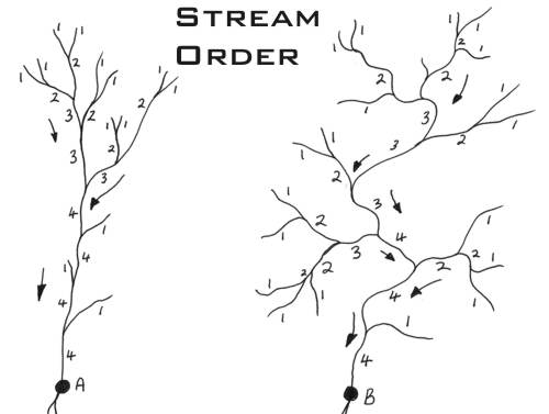 Diagram representing stream order with numbers starting in headwaters